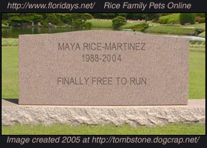 Fake tombstone from fun website